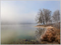 Frosty and foggy morning on Bohinj lake, Julian alps, Slovenia.