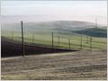 Utility poles among the Tuscany fields, Gallina, Tuscany, Italy.