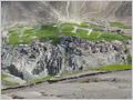 Photoskar village with green barley fields, Ladakh, Jammu and Kashmir, India.