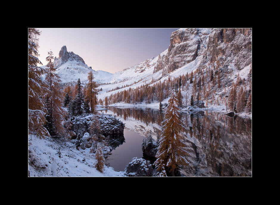 First snow dusting the European larches (Larix decidua) around lake Fedèra, Dolomiti Ampezzane, Italy.
