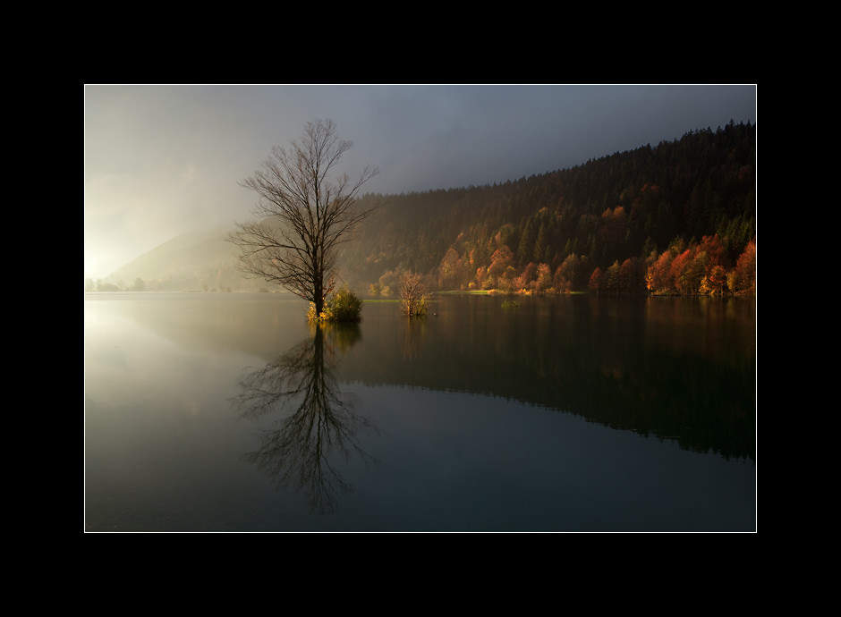 Autumn light on the flooded Planinsko Polje, Notranjska, Slovenia.